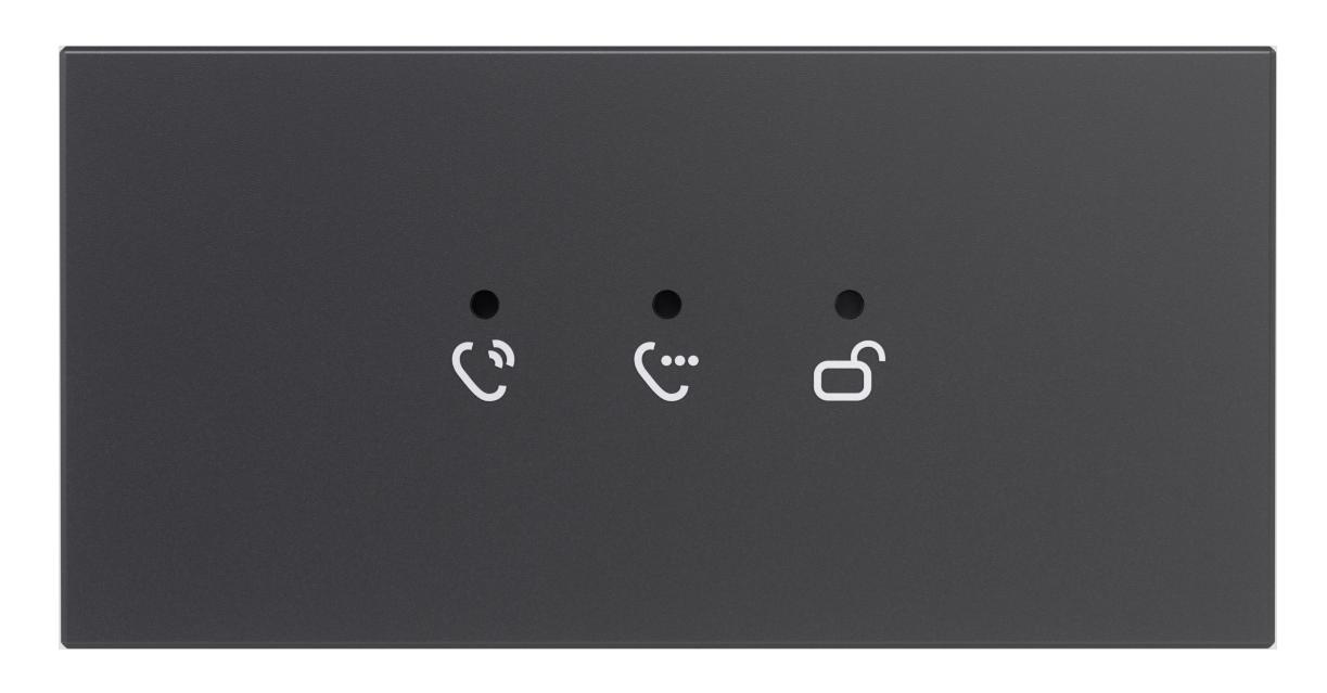 Modul Feedback - Hybrid Türsprechanlage Türklingel Anthrazit